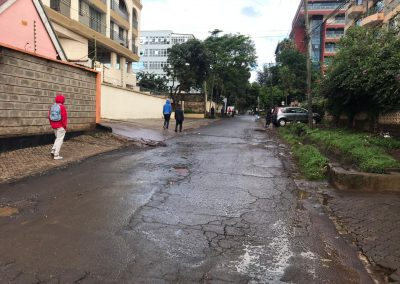 Mogotio westlands